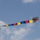 dragon in flight by katpartridge