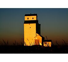 Golden Meadows Photographic Print