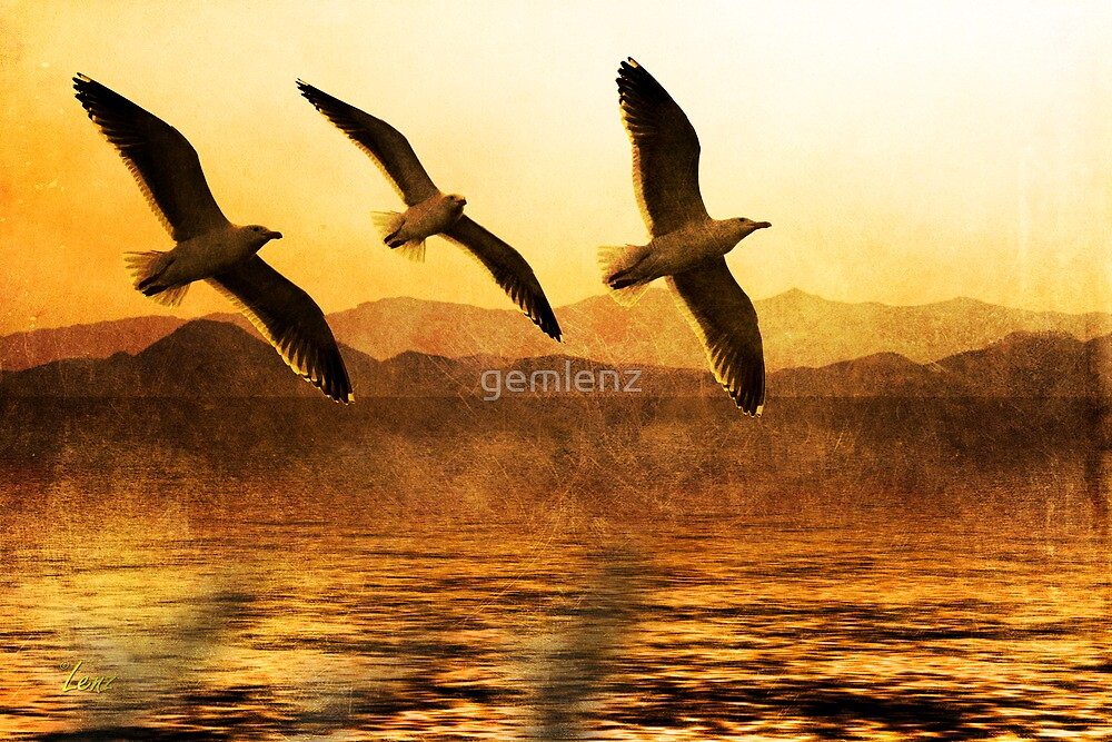 Flying Together by George Lenz