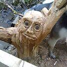 wierd carving in woods by vida91