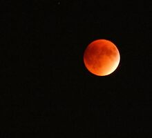 Blood Moon by Kathleen Brant