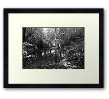 Bridge to the Green Framed Print