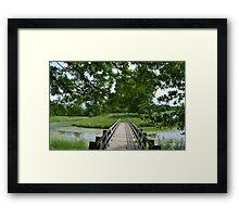 Little ole' bridge over the water Framed Print