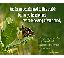 But Be Transformed ~ Romans 12:2 Photographic Print