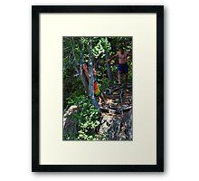 Smalls Falls Leap of Faith #1 Framed Print