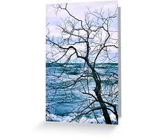 Wind Swept Greeting Card