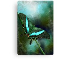 Emerald Peacock Swallowtail Canvas Print