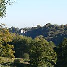 Lismore Castle & St.Carthage's Spire,Through the Trees. by Pat Duggan