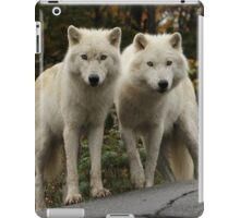 Curious pair iPad Case/Skin