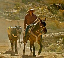 Dusty Trail by Brent Sisson