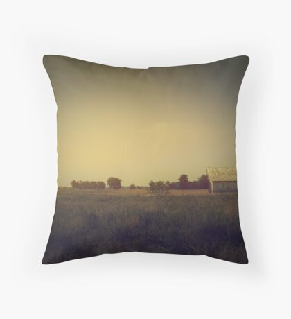 it's faded... it's all just faded and turning to dust Throw Pillow