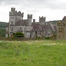 Gurteen Castle,Kilsheelan,Co.Tipperary,Ireland. by Pat Duggan
