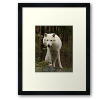 Leaning left Framed Print