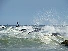 Surf Pounds Jetty at Island Beach State Park NJ by MotherNature