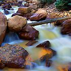 Mountain Creek by Brendon Perkins