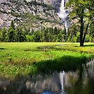 A Valley View by Barbara  Brown