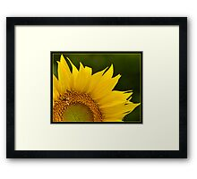 Facing the Rising Sun Framed Print