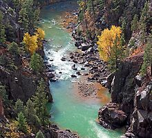 Animas River Gorge by Brendon Perkins