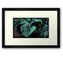 they once were pretty Framed Print