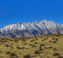 Mt San Jacinto by Brendon Perkins