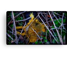 only the yellow remained Canvas Print