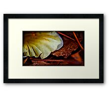 spreading out into earth tones Framed Print