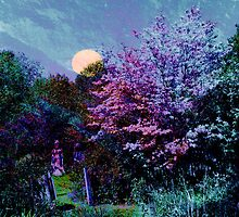 Magic on the Mountain~ Beltane Twilight by SummerJade
