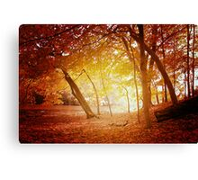 A place to dream. Canvas Print
