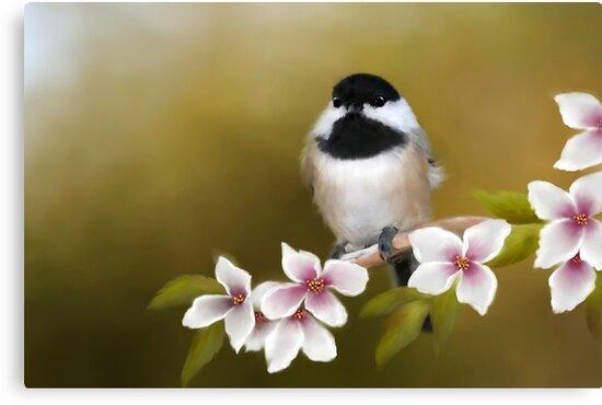 Apple Blossom Chickadee by Renee Dawson