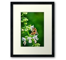 Just Bee Yourself.... Framed Print