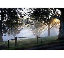 ~ Misty Gate ~ Photographic Print