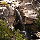 hidden falls by Ted Petrovits