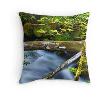 Sticks, Stones and Water  Throw Pillow