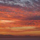 Smoky Misty Sunset by Cathy Martin