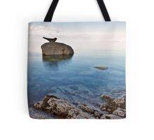 Corrie Seal Tote Bag