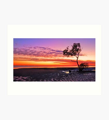 Sunrise on that Tree - Wellington Point Qld Art Print