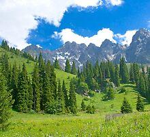 Mountain landscape Trans-Ili Alatau  by Medeu
