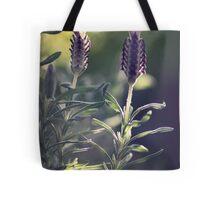 Lavender in Morning Light Tote Bag