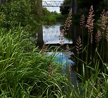 Cosgrove's Iron Trunk aqueduct by David Isaacson