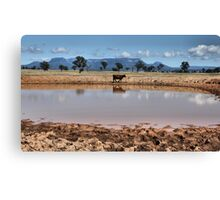 Capertee Billabong - NSW Australia Canvas Print