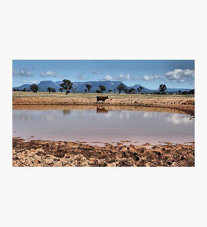 Capertee Billabong - NSW Australia Photographic Print