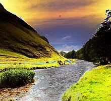 River Dove Curved by Paul  Green
