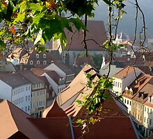 Medieval Roof Tops by FriedaAltmann