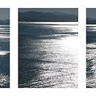 Blue Sea Triptych by Cathy Martin