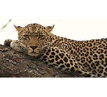 Karula - Peaceful Photographic Print