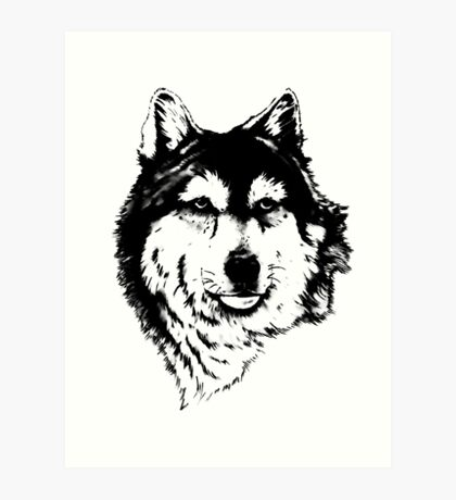 Timber wolf (Canis lupus lycaon) Sub-species of (Canis lupus) Art Print