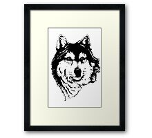 Timber wolf (Canis lupus lycaon) Sub-species of (Canis lupus) Framed Print