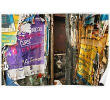 Montevideo, Uruguay 0930 Poster