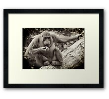 Yes, it is true!!! I am bored... Framed Print