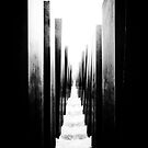 Berlin (Holocaust Memorial) by Rory Garforth